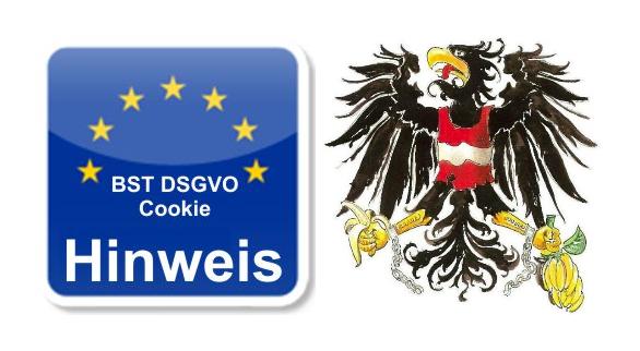 DSGVO der EU Verblödung